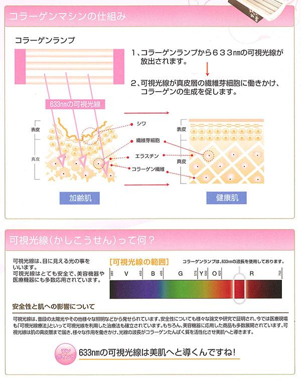 コラーゲンランプから放出される可視光線が真皮層の繊維芽細胞に働きかけ、コラーゲンの生成を促します。